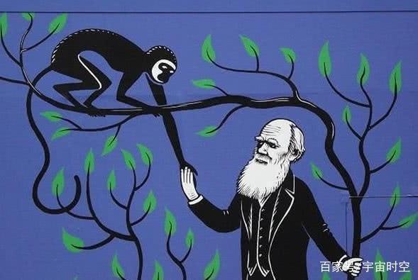 为何网络上总是有人诋毁攻击进化论?