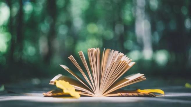 文学名著里经典的8句话,值得细细品味