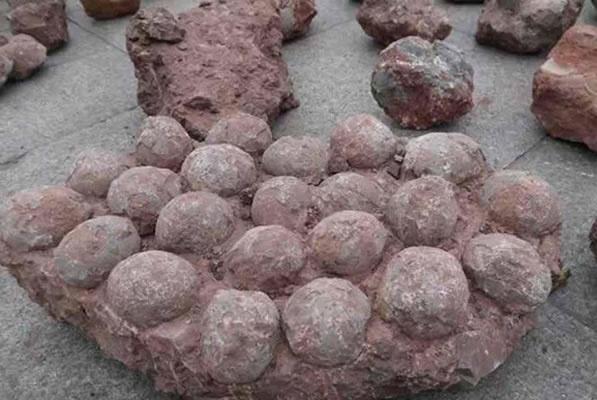捡到这些石头别扔掉,或许能让你暴富,老母鸡变鸭哦