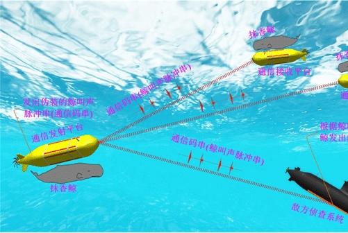 利用抹香鲸的叫声载波通信,真的无法破解吗?