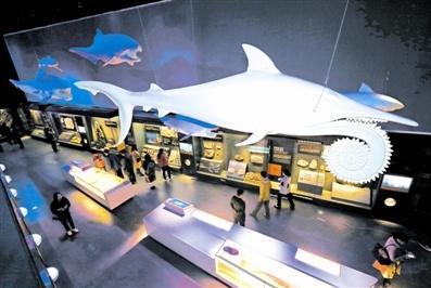 国家海洋博物馆年内开馆 六大展区诉说海的故事