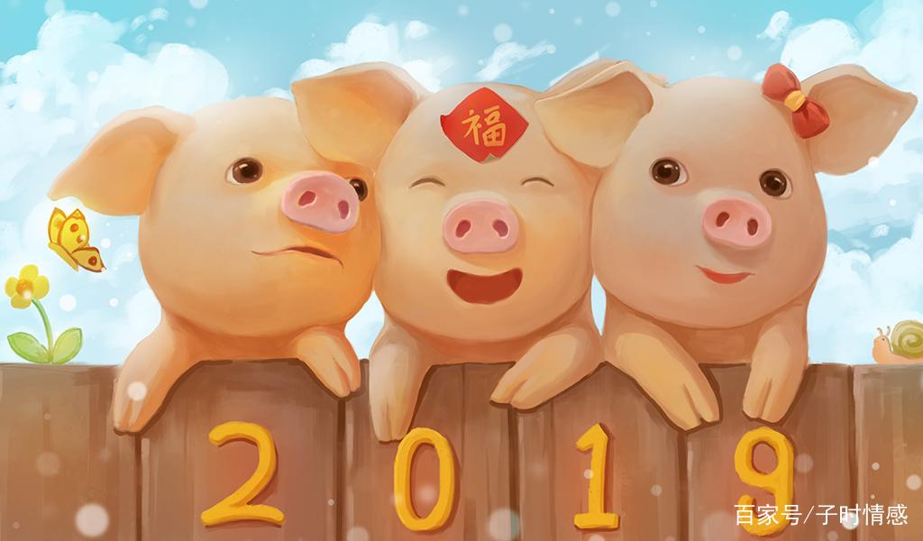 2019猪年到!这些可爱的猪宝宝有没有把你萌化呢?