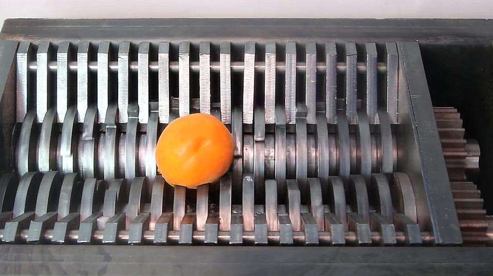 大胆实验,粉碎机将尝试粉碎杏子,杏子是否能毫发无损?