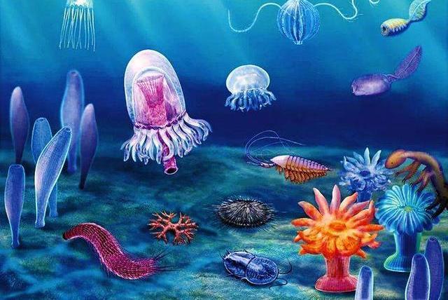 5亿多年前地球生物突然爆发式增多,却不见其祖先,原因至今是谜