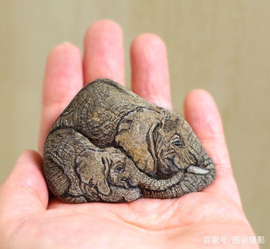 你看到的这些动物竟然都是石头上画出来的!