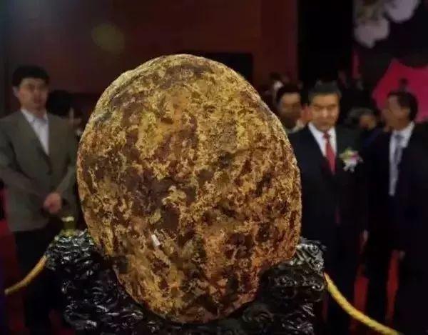 重19.2公斤血琥珀原石,价值2.5亿元