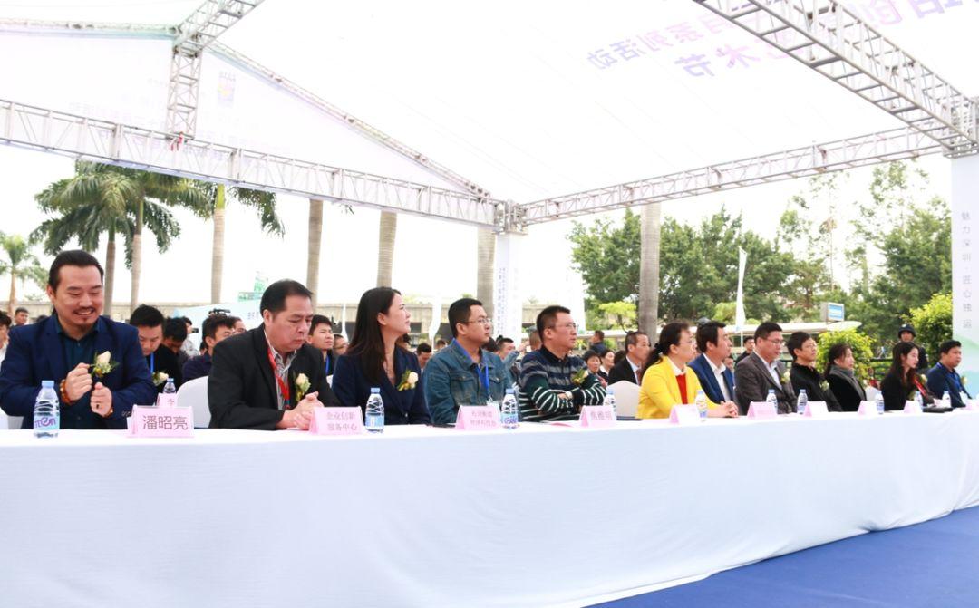 第十四届深圳创意十二月之第三届松岗琥珀创意艺术节开幕现场高朋满座
