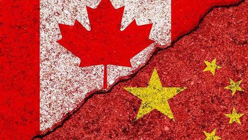 中国已经全面停止购买加拿大油菜籽!加网友:让那个女人走吧!