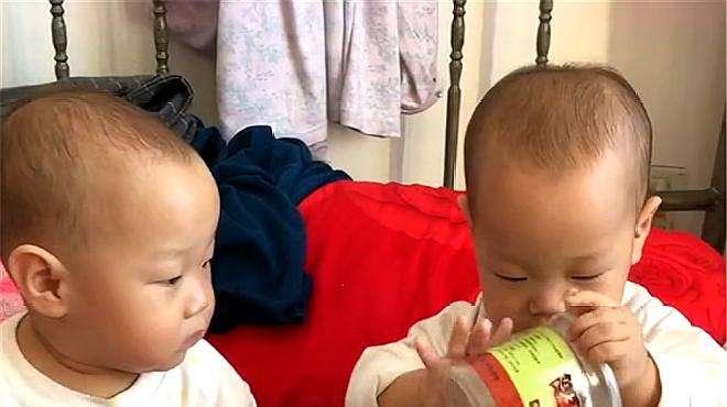 双胞胎弟弟拿着空盒子玩,哥哥硬要强,结果哥哥哭了