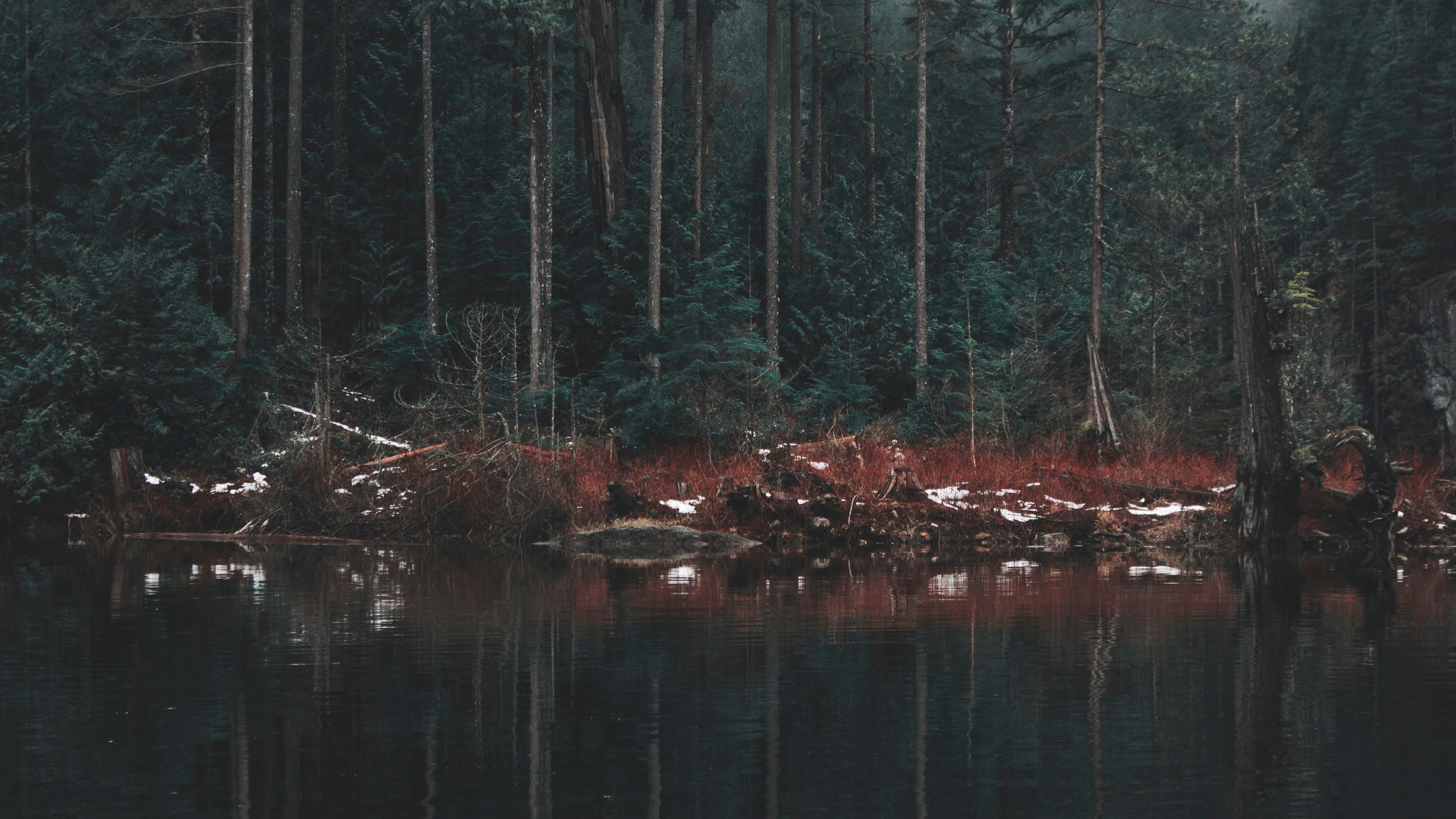 4k山 湖海 日落 日出 森林等壁纸图片
