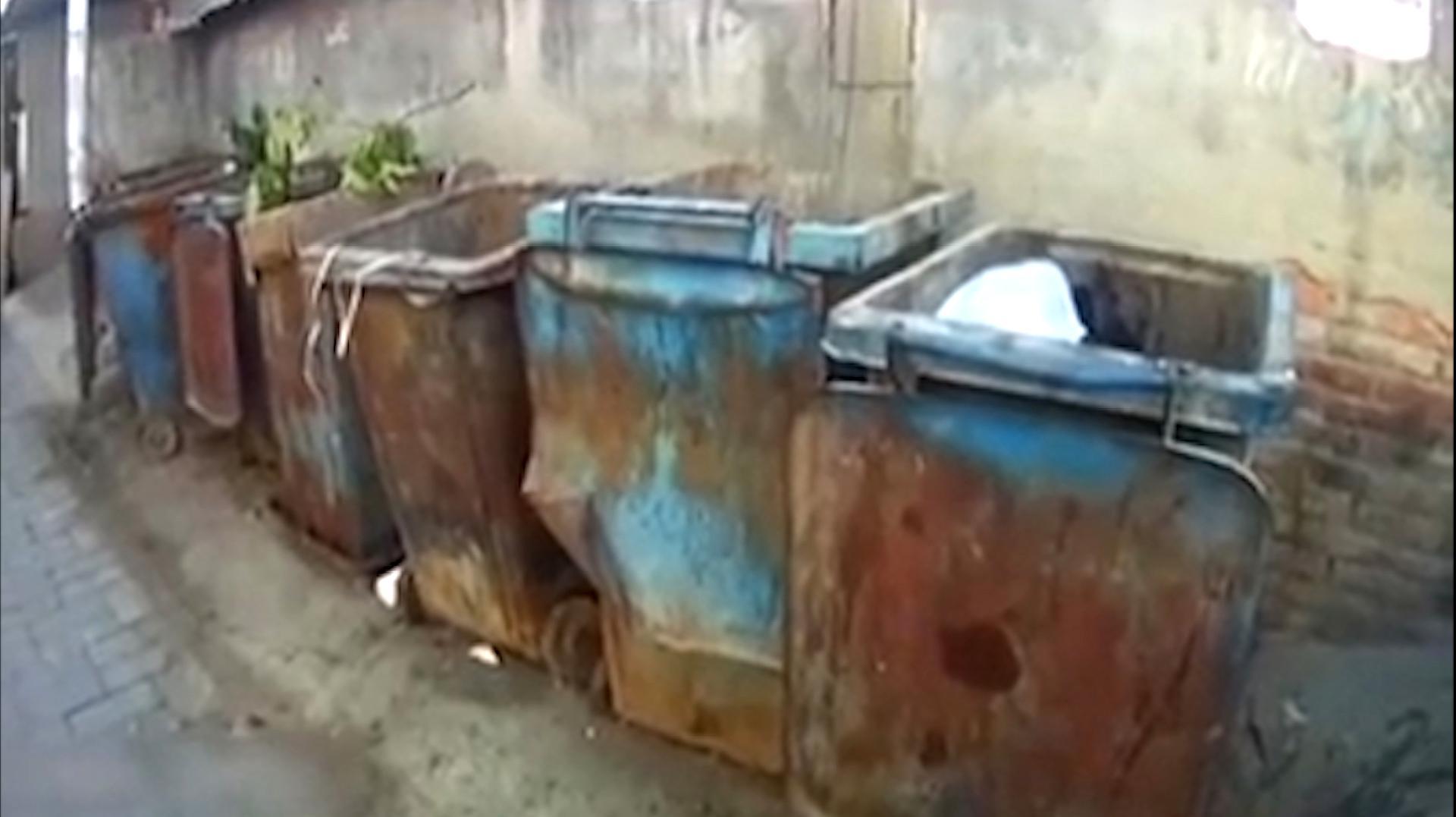 愤怒!北京昌平区一垃圾桶内发现弃婴发现时脐带还未剪断
