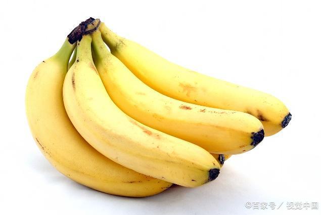 十个冷知识!智慧之果是什么水果?