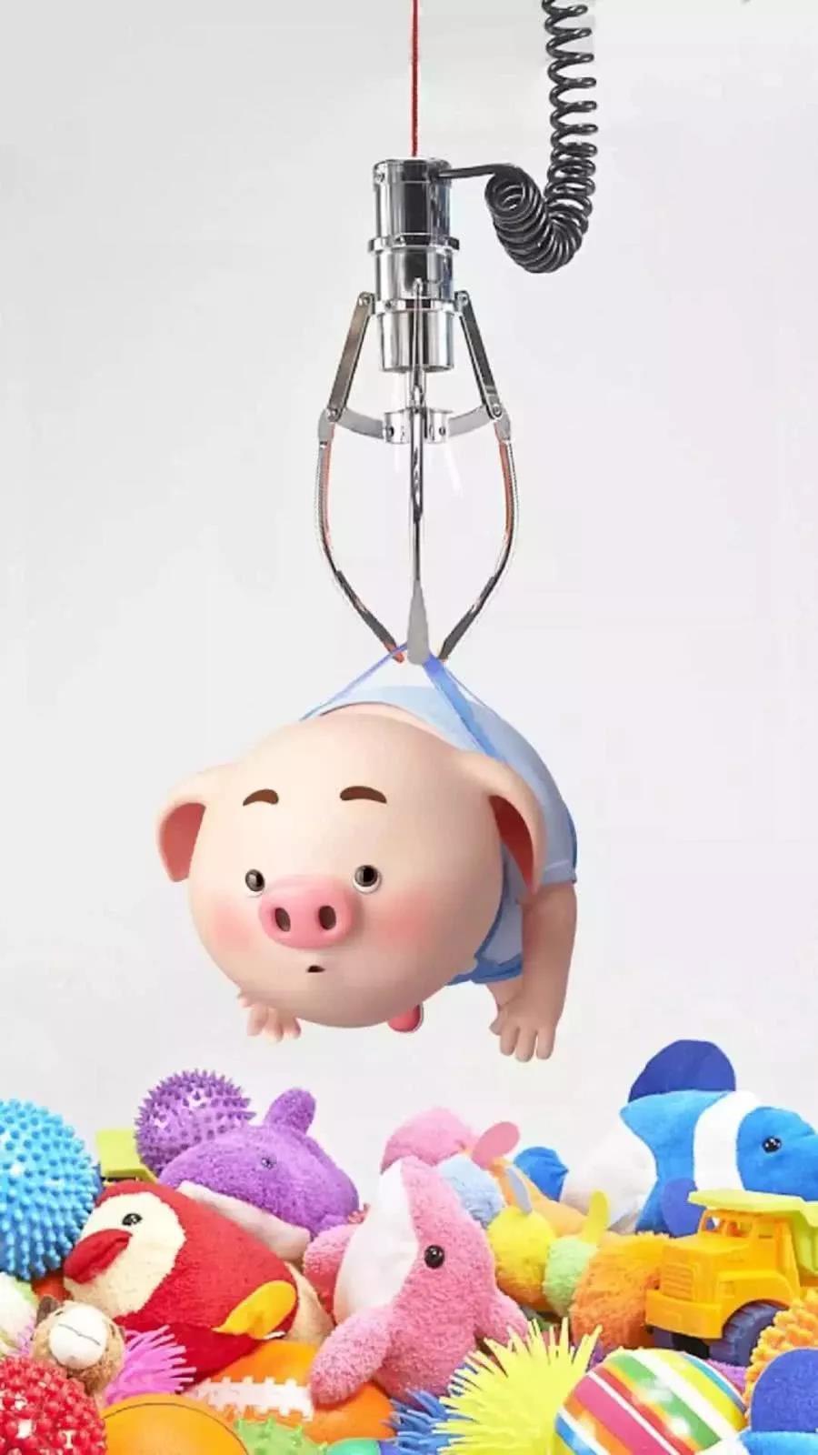 2019小猪猪新年壁纸,送给你,愿你新年里,想要的都拥有!