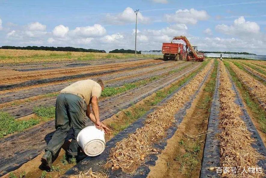 发展中国家和发达国家最明显的差距是什么?看了农业,一目了然!
