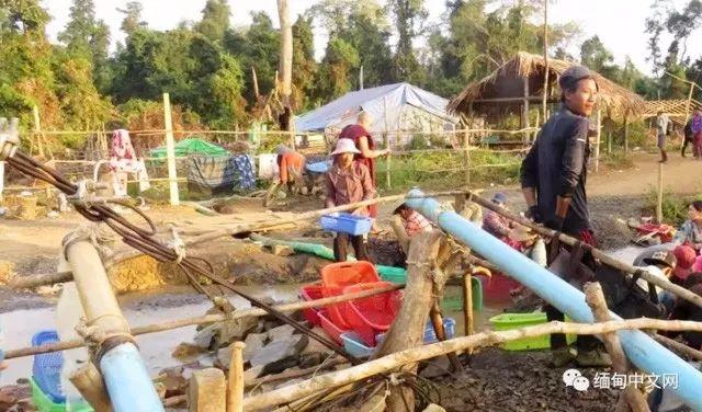缅甸琥珀开采矿区