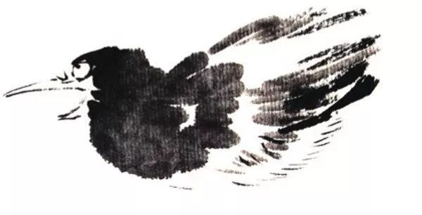 国画喜鹊的画法步骤教程二 3,勾画两侧翅膀及羽毛.