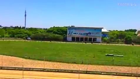 上海野生动物园赛马场