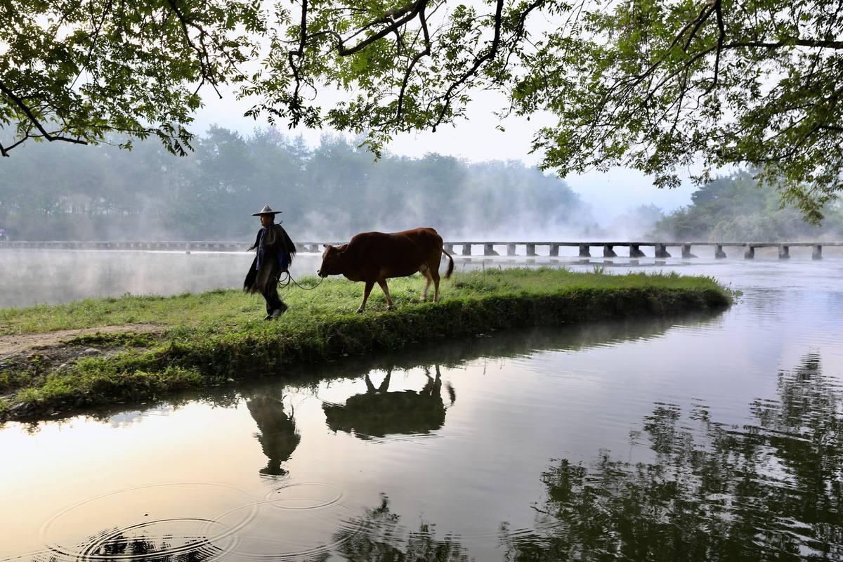 杜牧一首唐诗写尽春天的田园美景,更有温馨的乡土人情