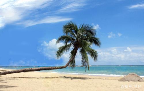 """这是具有热带海滨风景特色国际旅游城市,又被称为"""""""