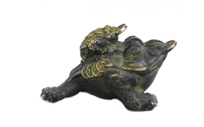 金蟾是什么动物,它是不是蛤蟆呢,它有代表着什么样的