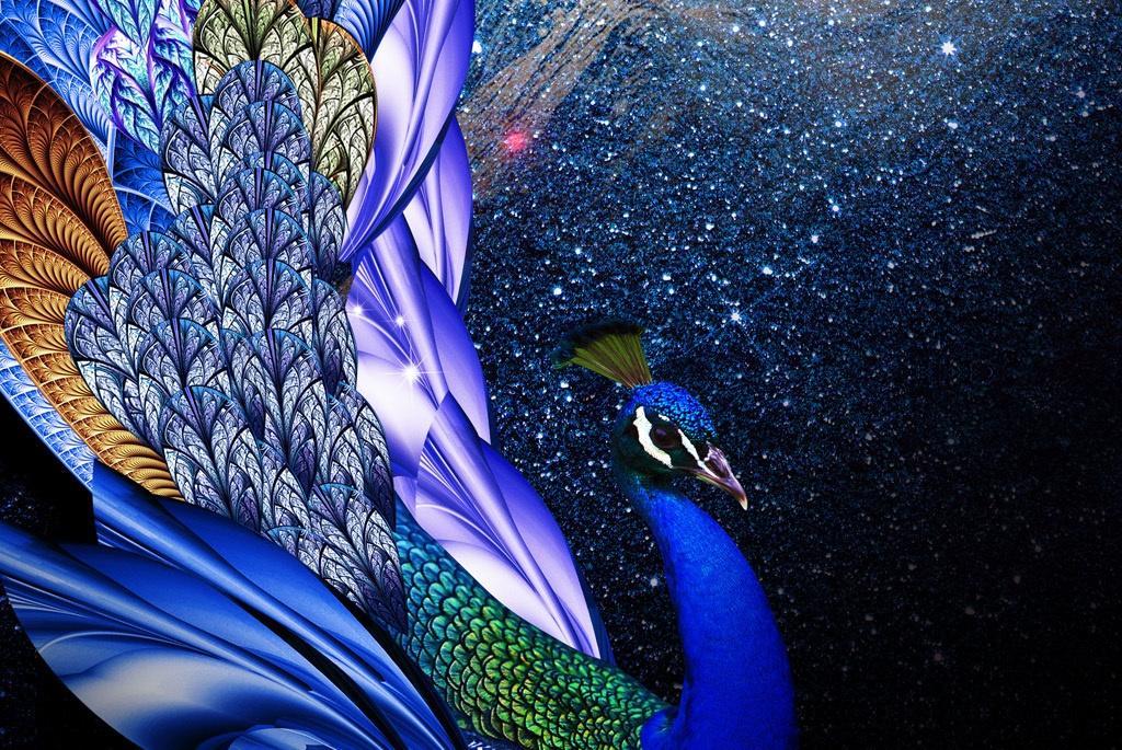 孔雀的弟弟大鹏金翅雕被如来限制自由,孔雀为何不出手相救?