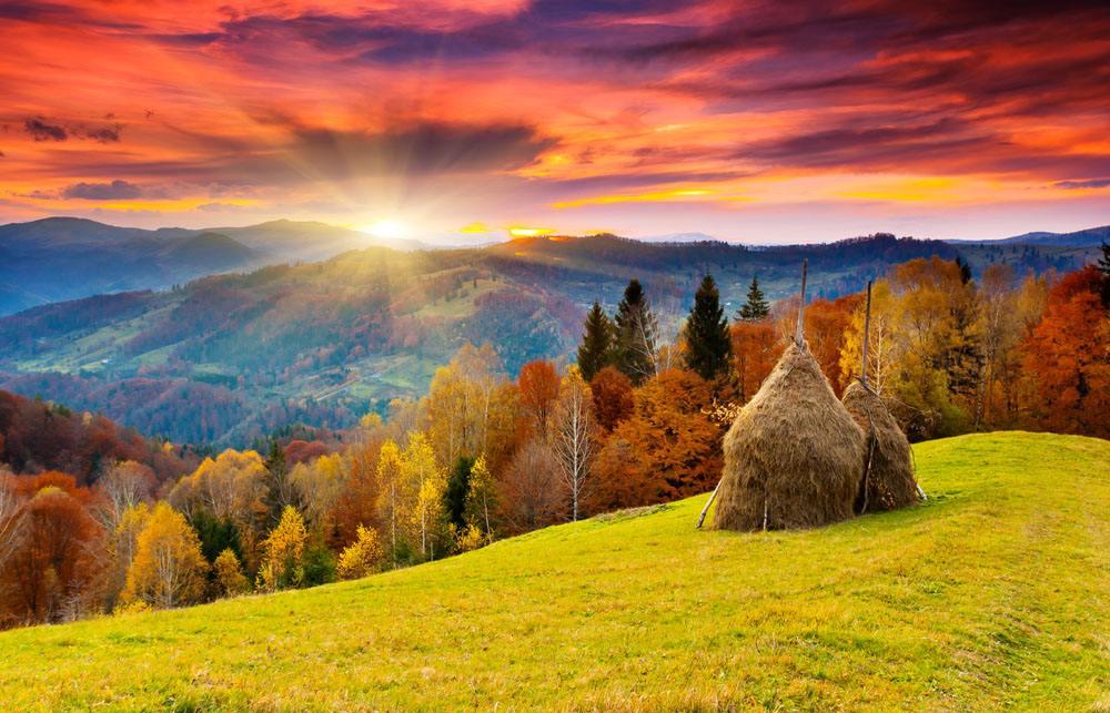 《假如给我三天光明》好句好段摘抄,祝愿你能看到了最美丽的风景