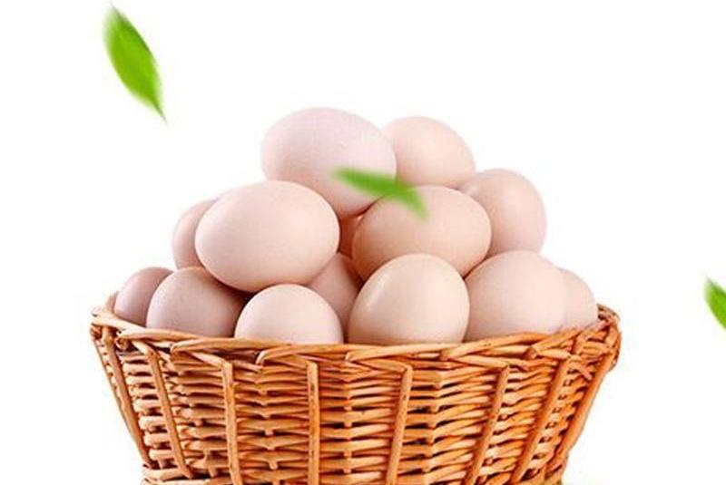 3·15曝光土鸡蛋秘密:商家注册商标好土、鲜土,并非土鸡蛋