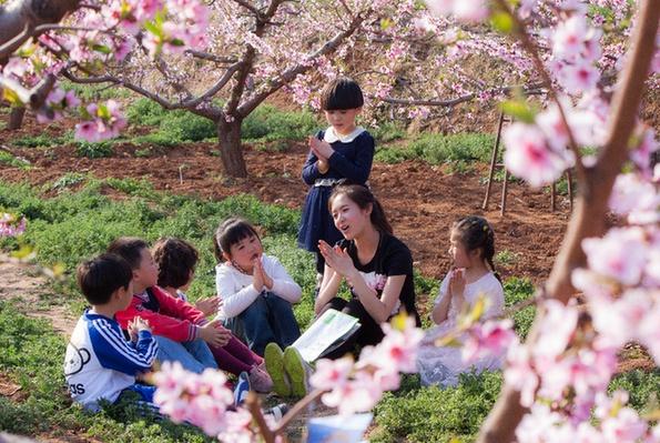 22万亩桃花竞相开放 北京市平谷区第二十一届桃花节开幕