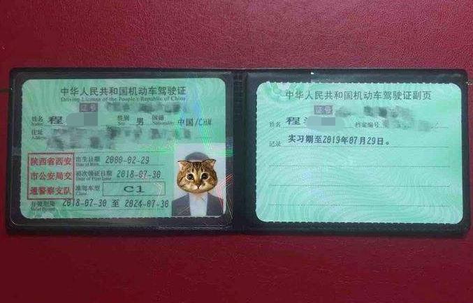 """史称""""最牛""""驾照,全中国不超过五万本,有了它几乎什么车都能开"""