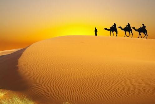 地球上最称奇的沙漠,虾蟹类产量超高,连外地人都想过来居住