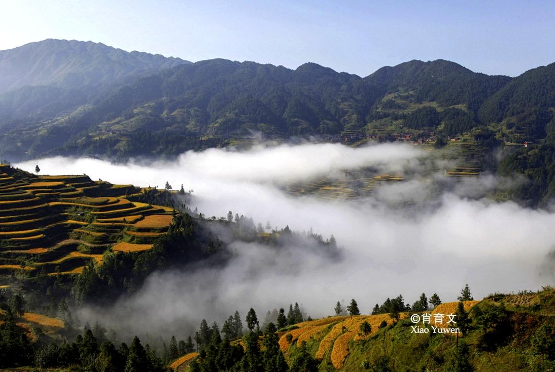 被誉为云上城的丹寨,有处叫韭菜沟的森林公园,养在深山人未知