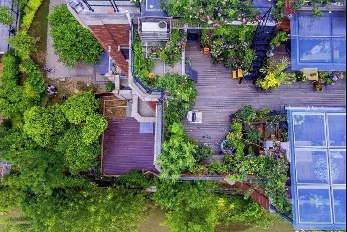 耗时两年!她和5岁女儿一起改造露台,做出南京最美花园!