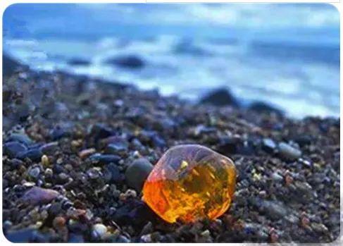 波罗的海琥珀原石