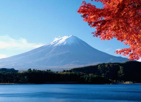 有山有水有树木,山侧边的线条十分陡峭,近处的树叶
