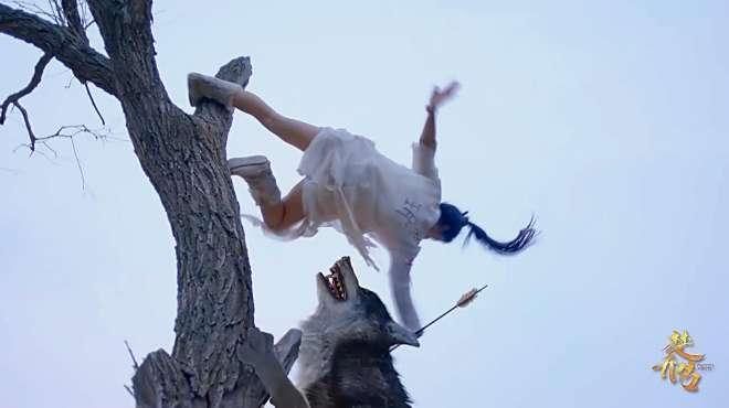 记忆不存功夫犹在!楚乔只身面对两匹狼!一枝箭矢送它俩升天!