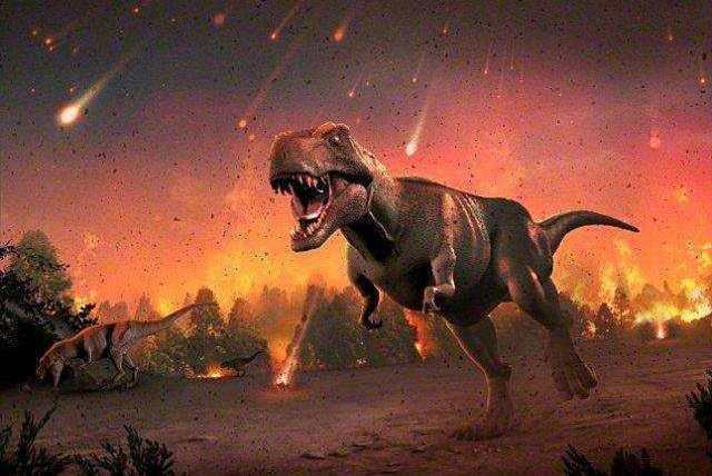 经常听说物种灭绝却很少听说新物种诞生!其实很多物种正在诞生!