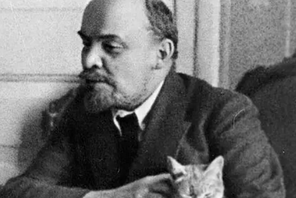 """历史中也有""""猫奴"""",爱猫的程度比现代人还高,网友:活的不如猫"""