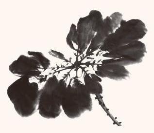 写意荷花老叶和嫩叶的画法