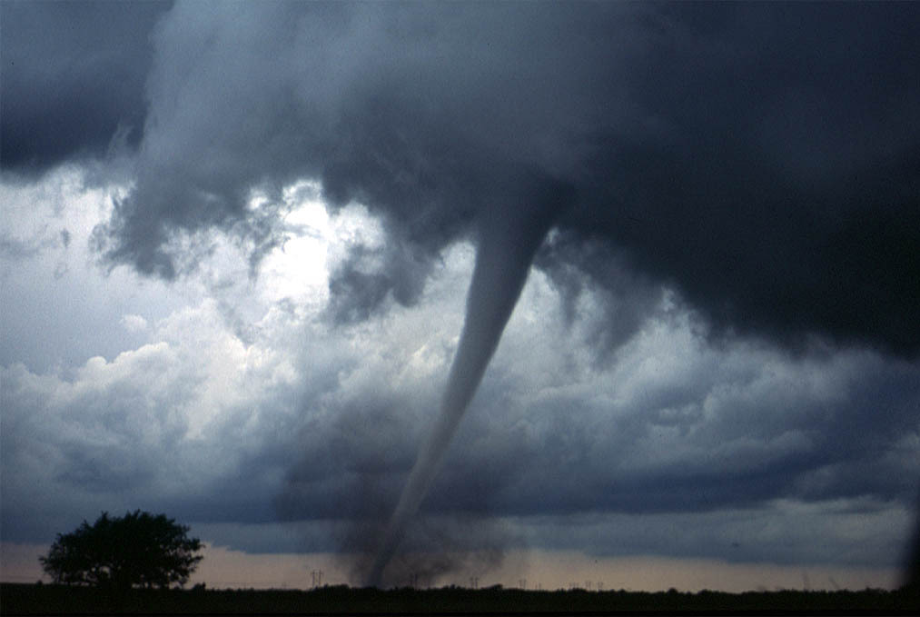 龙卷风将森林夷为平地,无人机却拍到难以置信的画面!