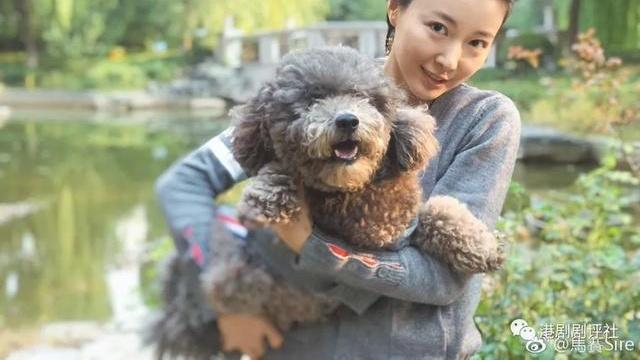 前TVB女星与内地富二代奉子结婚 怀孕5月是男孩