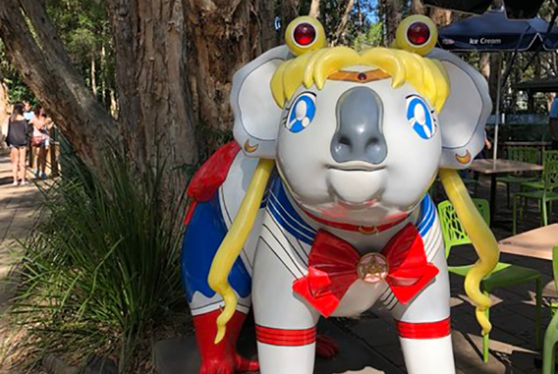 爆笑动漫:澳洲人玩坏考拉,不单cos动漫人物,各种游戏人物也出