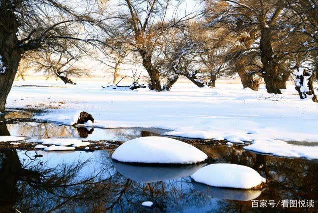 阳春三月:你在南方看花海,我在塞上赏春雪