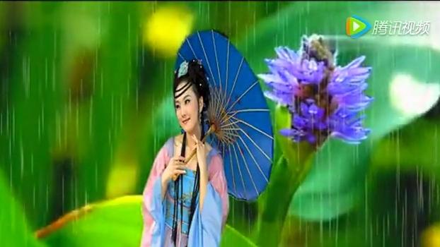无花果太极音乐 笛子琵琶合奏《雨碎江南》