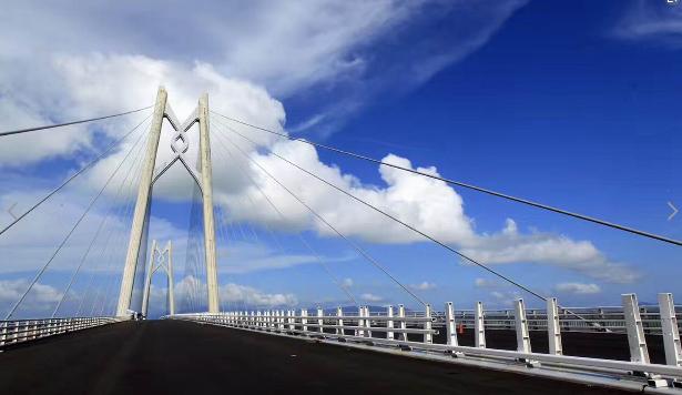 港澳珠大桥后,担心的一个问题随之而来,但设计师早已图片
