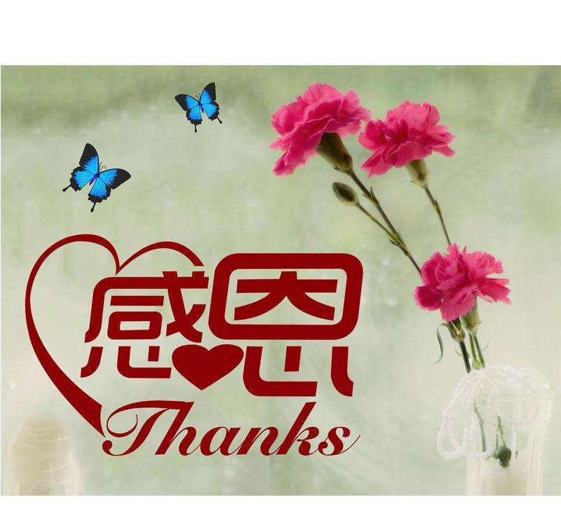 欧阳菲菲《感恩的心》背后的故事,感恩的心,感谢有你!