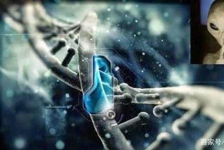 如果进化论是错误的,那么人类到底是如何产生的?