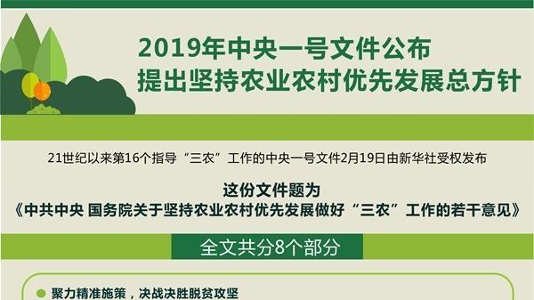 """期待""""一号文件""""催开""""三农""""兴盛之花"""