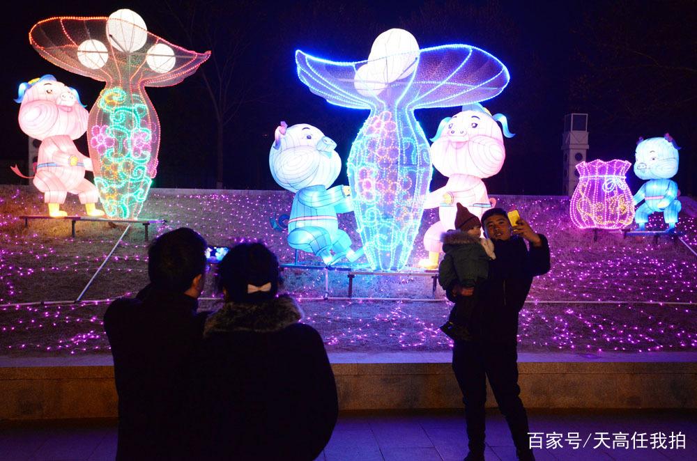 """只要有小猪造型的花灯,人们就停下脚步,开始拍照,也许今年是""""小猪"""