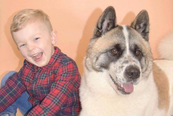 孕妇不听婆婆劝阻执意留下爱犬,没想到竟意外救了自己一命!