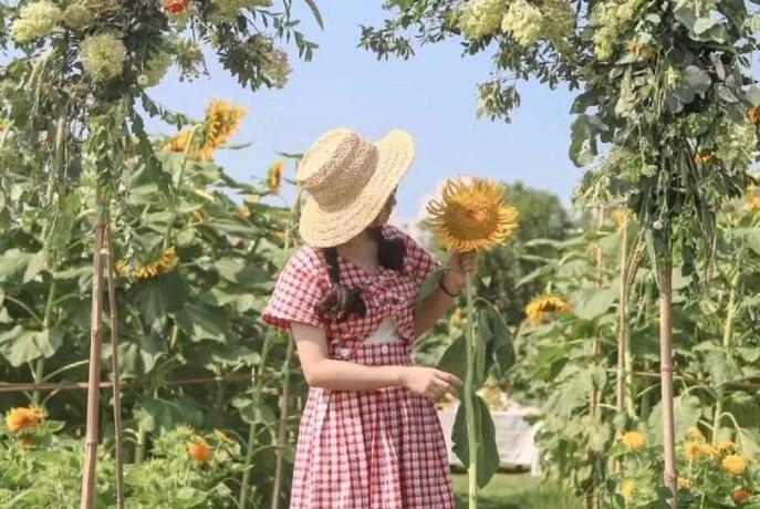18岁少女爆改废旧仓库,美称的田园小院引万人点赞